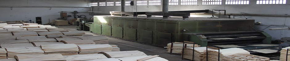 Plywood production
